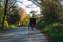 Back view of an Amish Buggy